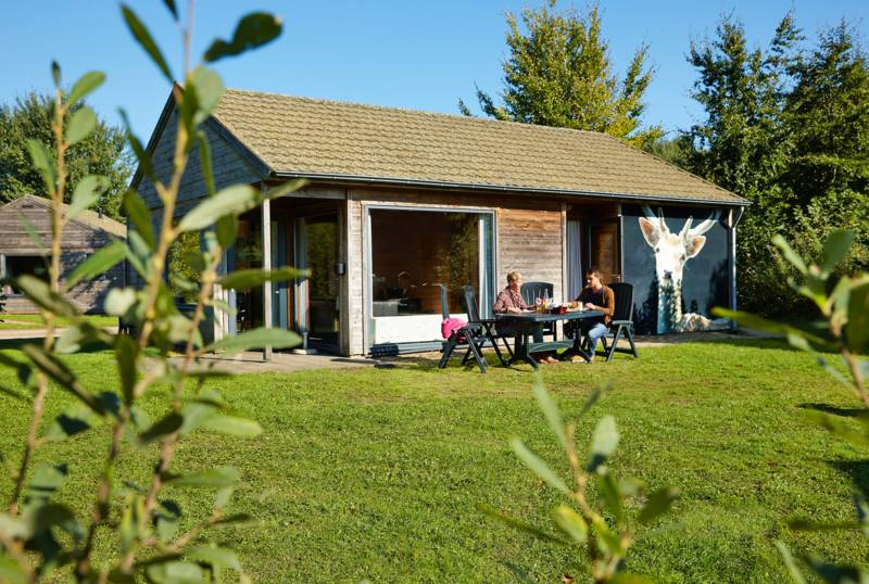 accommodatie bungalow damhert